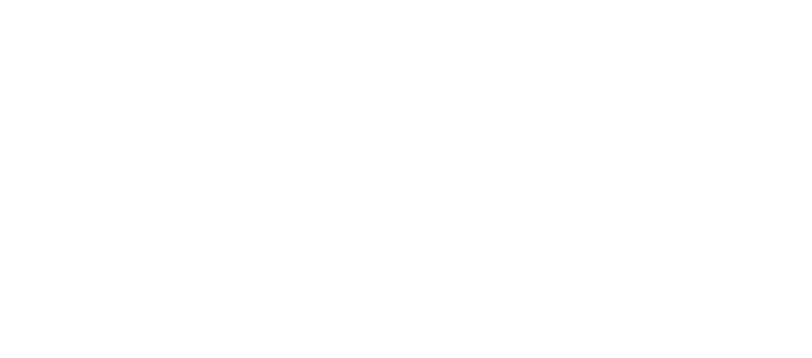 Logo de la société 360 vision technology en version blanche